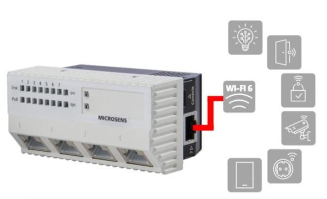 10 gb microswitch